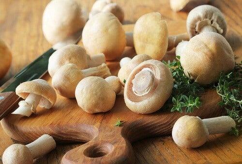 Ricette con i funghi leggere e gustose