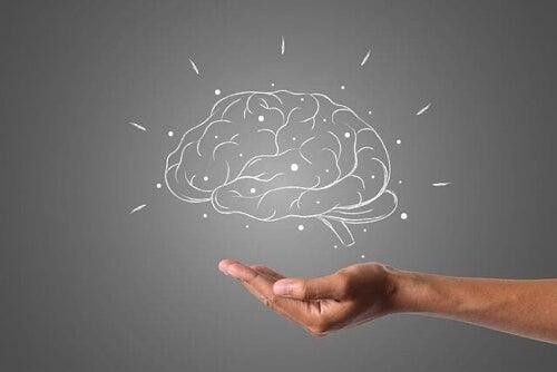 Tumore al cervello: cause, sintomi e trattamenti