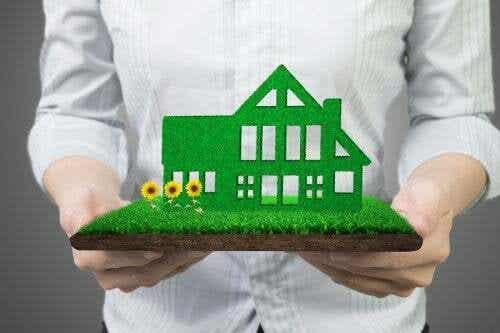 Casa ecosostenibile: 12 abitudini per proteggere il pianeta