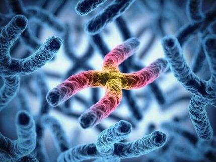 Cromosoma x causa daltonismo