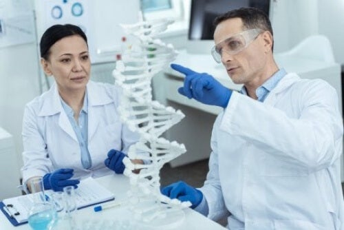 Ricercatori che studiano le mutazioni genetiche della sindrome di Zellweger.