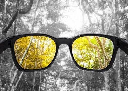 Percezione cromatica insufficiente o daltonismo