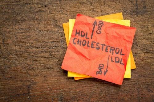 Problemi di colesterolo alto: abitudini da evitare