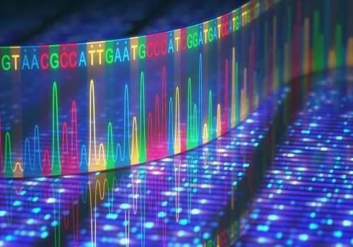 Genetica nei tumori alla mandibola.