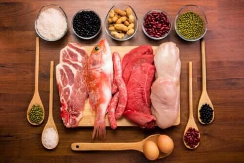 Le proteine nel corpo: azione e funzioni