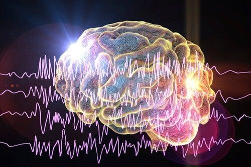Diversi tipi di crisi epilettiche ed effetti sul cervello.