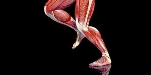 Trigger point nei muscoli.