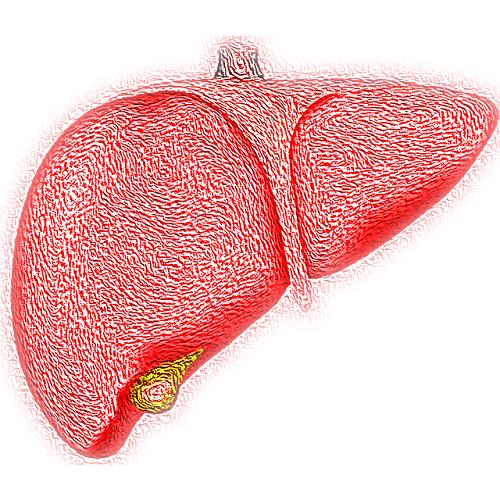 Prevenire l'epatite è possibile, scoprite come