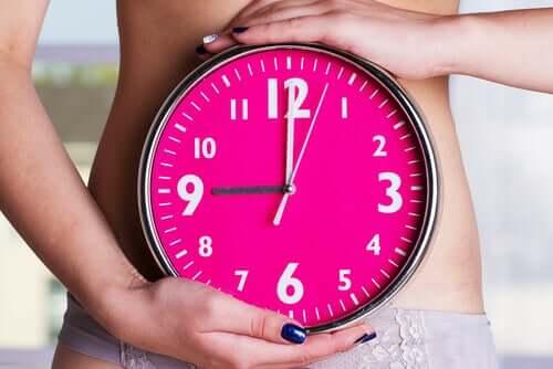 Le mestruazioni seguono un ciclo preciso.