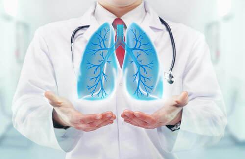 Illustrazione che rappresenta dei polmoni.