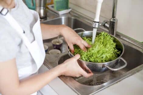 Lavare nel giusto modo la lattuga per evitare la contaminazione crociata.