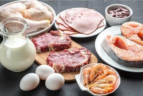Cibi che sono fonti di proteine animali.