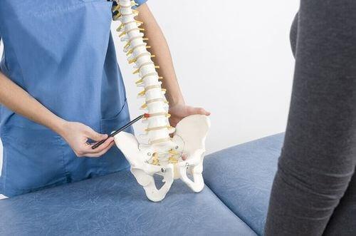 Medico con modello di colonna vertebrale.