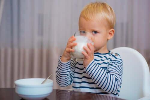 Il latte migliore per il bambino dopo i 12 mesi