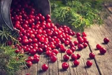 I mirtilli aiutano a trattare lo acufene perché ricchi di sostanze antiossidanti.