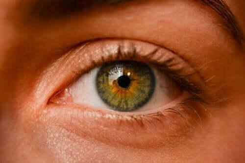 Nevi oculari: sono pericolosi per la salute?