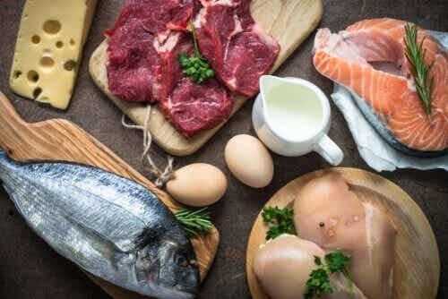 Le proteine: cosa sono e a cosa servono?