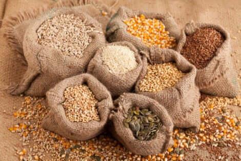 I semi aiutano a prevenire la sarcopenia.
