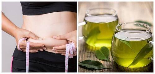 Il tè verde aiuta a perdere il grasso addominale.