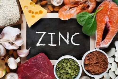 Funzioni dello zinco nell'organismo