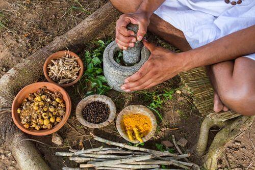 Dieta ayurvedica e piante medicinali nel mortaio.