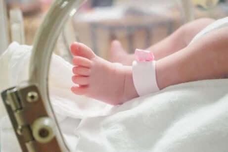 Bambino prematuro nell'incubatrice.