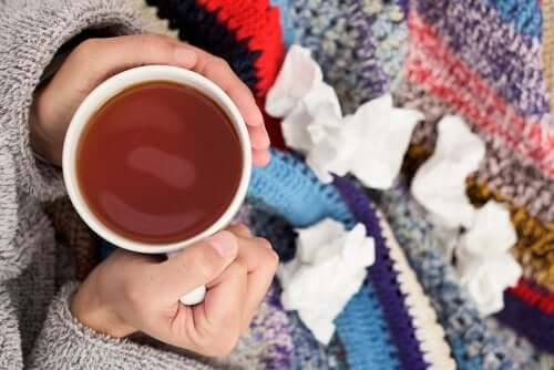 Rimedi espettoranti per la tosse 100% naturali
