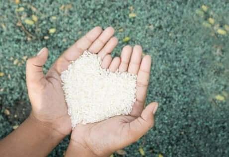 Mani giunte che reggono del riso bianco a forma di cuore.