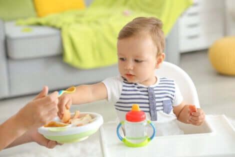 Primi tentativi di introdurre i cibi solidi nella dieta del neonato.