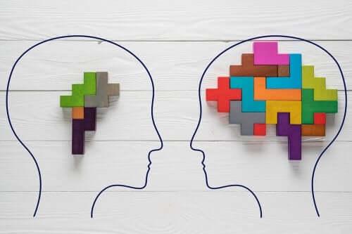 Curiosità sul cervello che forse non conoscete