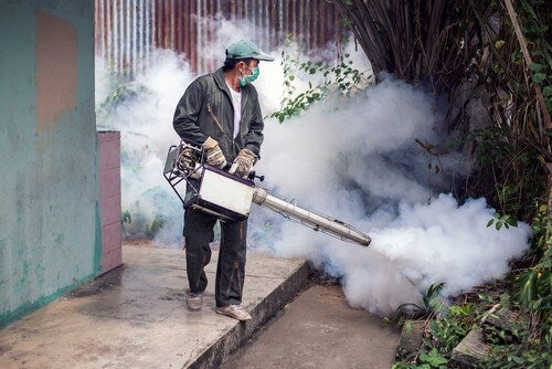 Disinfestazione contro le malattie trasmesse dalle zanzare.