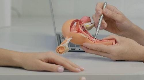 Rapporti sessuali dopo l'isterectomia