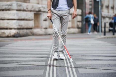 Disabilità visiva e non vedente a passeggio.
