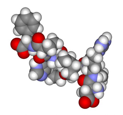 Struttura degli androgeni.