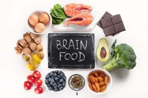 Alimenti per la salute del cervello secondo la scienza