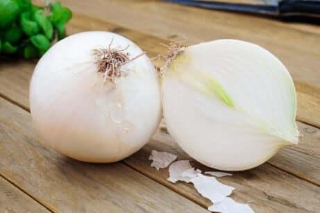 Cipolle bianche sono utili nel prevenire le malattie cardiache.
