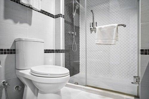 Decorare la tavoletta del WC con semplici idee