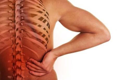 Mano sulla schiena e colonna vertebrale.