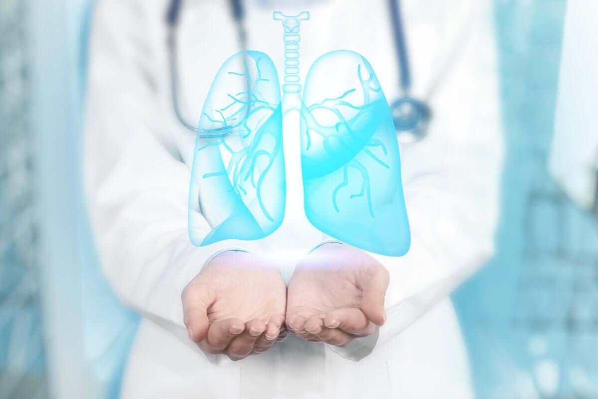 Medico con i polmoni in mano.