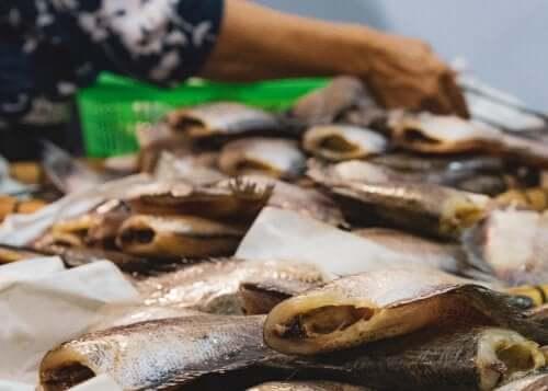 Intossicazione alimentare da pesce: quali sono i sintomi?