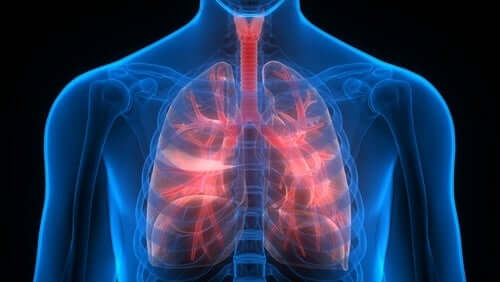 Salute dei polmoni.