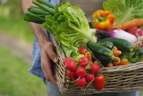 Alimenti a basso contenuto di sodio: cesta con ortaggi.