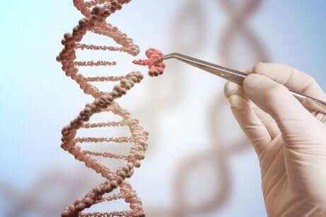 DNA e progetto genoma umano.