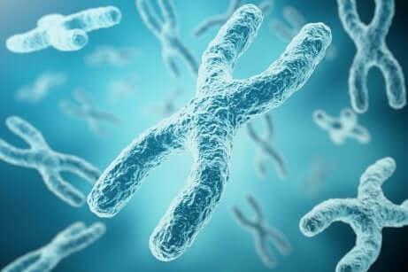 Genoma umano e DNA.