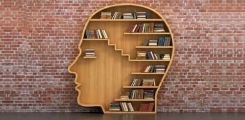 Biblioterapia e libreria a forma di testa.