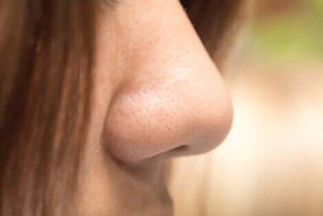 Naso femminile.