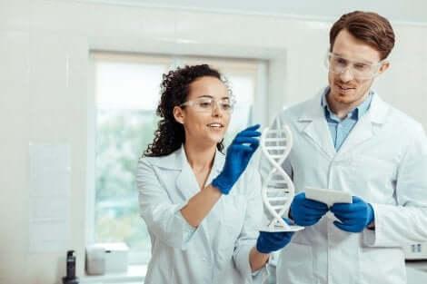 Scienziati e modello DNA