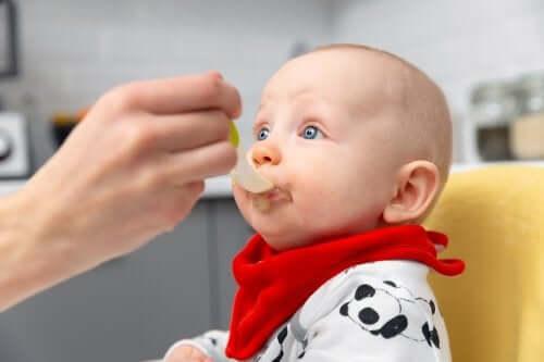 Alimentazione complementare: passaggi da seguire