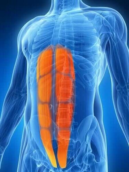 Strappo muscolare addominale: cos'è?