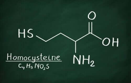 Molecola di omocisteina.